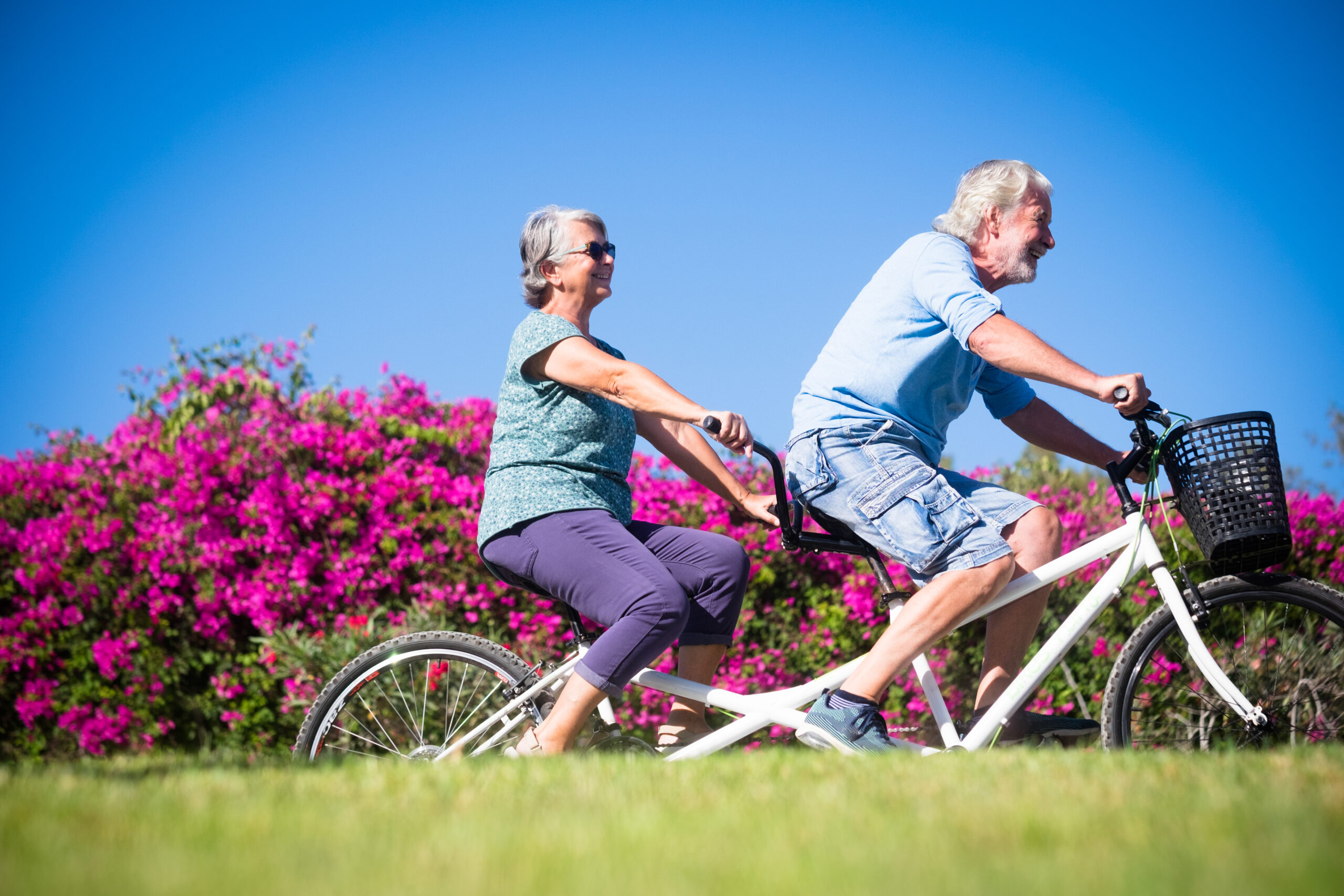 beautiful cute couple mature old woman man riding together double bike green park with pink flowers background active senior having fun with tandem